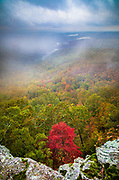 White Rock Mountain Recreation Area in the Ozark National Forest in Arkansas. This area is spectacular in the fall with its vibrant and colorful foliage.