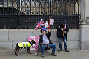 On the day that Prime Minister Theresa Mays Meaningful Brexit vote is taken in the UK Parliament, Leave supporters protest at the railings of the House of Commons in Parliament Square on 15th January 2019, in Westminster, London, England.
