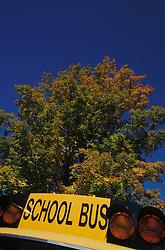 Fall foilage season. Yellow school bus. CONCEPT STOCK PHOTOS CONCEPT STOCK PHOTOS