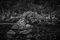 Merced River Meditation. Image taken with a Nikon D3 camera and 24-70 mm f/2.8 lens (ISO 200, 27 mm, f/16, 1.6 sec). Camera mounted on a tripod. Monochrome Version.