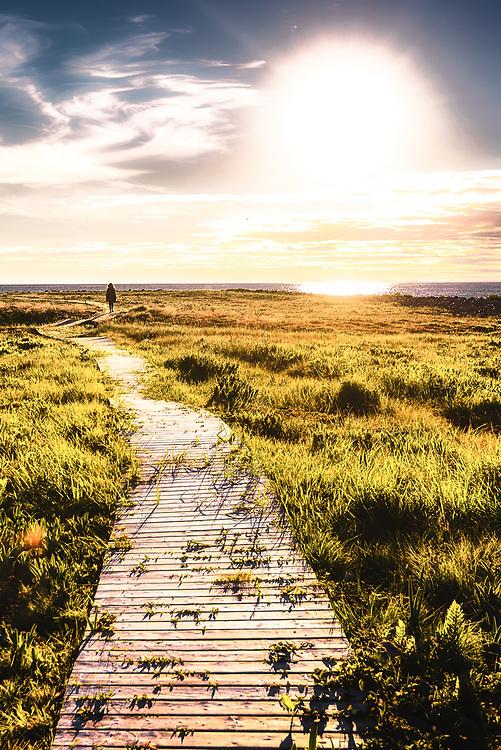 Walking trail at Ramea, Newfoundland and Labrador