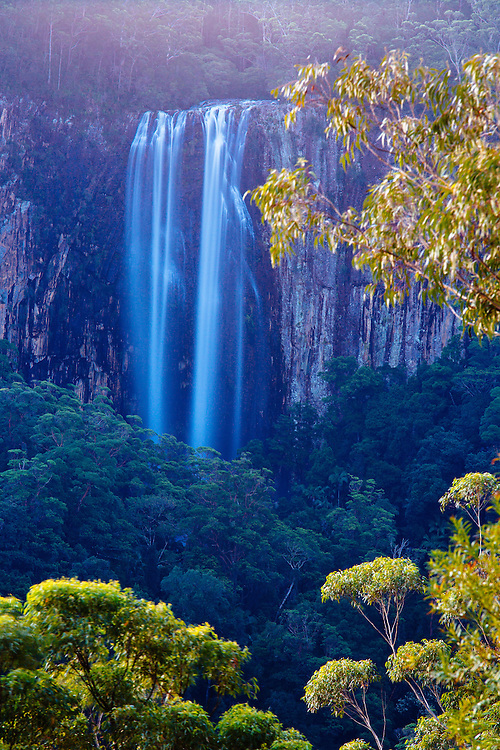 The 100m Minyon Falls after heavy rain, Nightcap National Park.