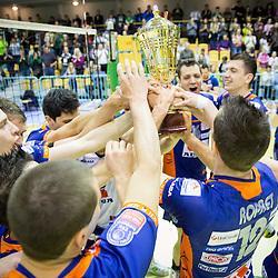 20140415: SLO, Volleyball - Final of 1. DOL, Panvita Pomgrad vs ACH Volley