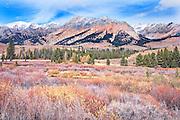 Autumn colors in wetland below Boulder Mt. Sun Valley ID