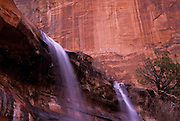 Image of Emerald Pool Falls at Zion National Park in Utah, American Southwest by Andrea Wells