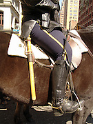 Close up of a mounted police woman on horseback New York City.