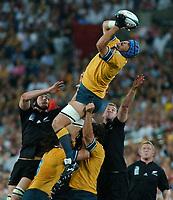 Photo: Steve Holland.<br />New Zealand v Australia. Semi-Final, at the Telstra Stadium, Sydney. RWC 2003. 15/11/2003. <br />Nathan Sharp wins a lineout as Ali Williams and Chris Jack challenge.