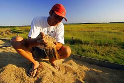 Colheita do arroz em uma lavoura do municipio de Camaqua, no Estado do RS. FOTO: Jefferson Bernardes / Preview.com