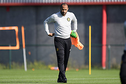 October 9, 2018 - France - Thierry Henry ass. coach of Belgian Team (Credit Image: © Panoramic via ZUMA Press)