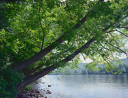Connecticut River bank Near Charlestown, New Hampshire