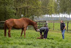 Vins CD, O SO Lucky CD<br /> Wachtebeke 2021<br /> © Hippo Foto - Dirk Caremans<br /> 12/05/2021