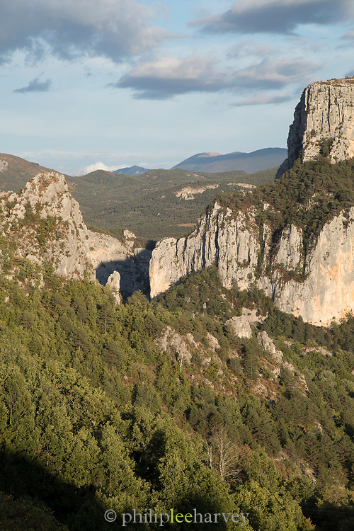 Ridge covered in forest ion sunny day, Verdon Natural Regional Park, France