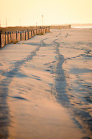 Tire tracks in the sand, Cape May, New Jersey.