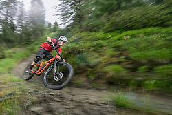 Mountain biker speeding on track through forest path, Trentino-Alto Adige, Italy