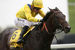 Young Rascal and Jim Crowley win The Dubai Duty Free Legacy Cup Stakes Race run during day two of Dubai Duty Free International Weekend at Newbury Racecourse.
