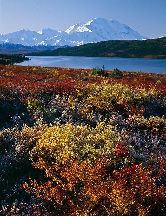 Mount McKinley and Wonder Lake, late September, Denali National Park, Alaska, USA