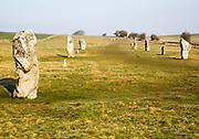 Lines of standing sarsen stones form the Avenue, Avebury World Heritage site, Wiltshire, England, UK