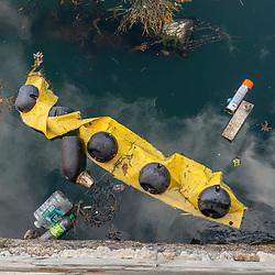 Trash in the harbor, Portland, Maine.