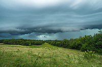A shelf cloud approaches a grassy field near Mackinaw, Illinois. This storm hit a half an hour before sunset. It actually became so dark that fireflies started to come out.<br />