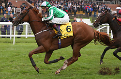Mr Lupton and Gerald Mosse win The Dubai International Airport World Trophy Stakes Race run during day two of Dubai Duty Free International Weekend at Newbury Racecourse.