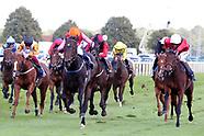 Horse Racing St Ledger Festival Day Three 130919
