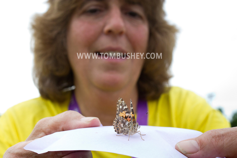 Newburgh, New York -Butterflies are released during the Relay for Life of Newburgh at Cronomer Hill Park on June 8, 2013. The Relay for Life is the American Cancer Society's signature fundraising event. Participants celebrate the lives of people who have battled cancer, remember loved ones lost, and fight back against the disease by raising money.