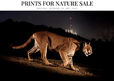 Prints for Nature Sale