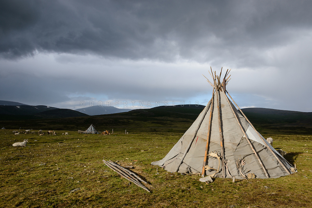 An ortz (teepee) bathes in evening light with reindeer antlers left outside to dry, Mongolia. The antlers are sold and used to make carvings for tourists. Approximately 200 families comprise the Tsaatan or Dukha community in northwestern Mongolia, whose existence is intimately linked to their herds of reindeer. Photo © Robert van Sluis