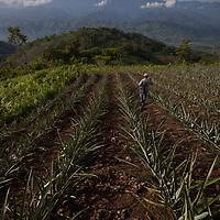 visit to Guatemala with World Renew