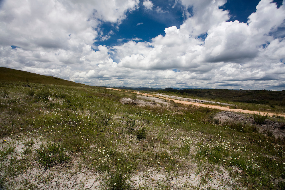 Diamantina_MG, Brasil...Circuito Estrada Real. Paisagem com sempre-vivas em Diamantina, Minas Gerais...The Real Road (Estrada Real) Circuit. A landscape with sempre-vivas in Diamantina, Minas Gerais...Foto: LEO DRUMOND /  NITRO