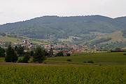 vineyard and village beaujolais burgundy france
