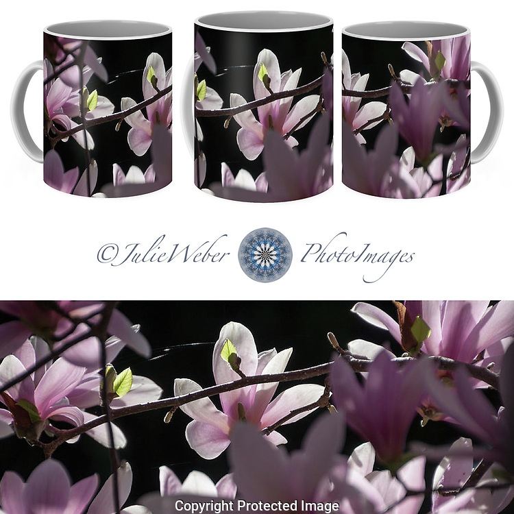 Coffee Mug Showcase 95 - Shop here: https://2-julie-weber.pixels.com/featured/enchantment-julie-weber.html?product=coffee-mug