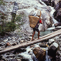 A porter carries loads for trekkers in Nepal