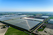 Nederland, Noord-Holland, Hollands Kroon, 07-05-2018; nieuwe kassen te midden van bloembollenvelden, nabij Agriport A7.<br /> New greenhouses amidst lower fields, near Agriport A7.<br /> <br /> luchtfoto (toeslag op standaard tarieven);<br /> aerial photo (additional fee required);<br /> copyright foto/photo Siebe Swart