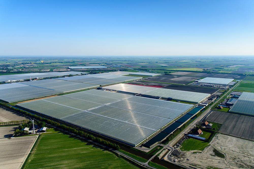 Nederland, Noord-Holland, Hollands Kroon, 07-05-2018; nieuwe kassen te midden van bloembollenvelden, nabij Agriport A7.<br /> New greenhouses amidst lower fields, near Agriport A7.<br /> <br /> luchtfoto (toeslag op standaard tarieven);<br /> aerial photo (additional fee required);<br /> copyright foto/photo Siebe Swart