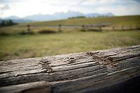 Wedding — Ania Mikolajek and Chris Jorgenson, Shane Cabin, Grand Teton National Park