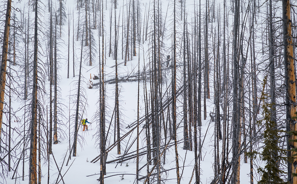 Skiing at Helen Shoulder in Banff National Park, Alberta, Canada