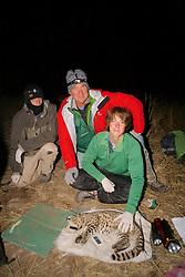 Matt, Scott & Nick With Geoffroy's Cat
