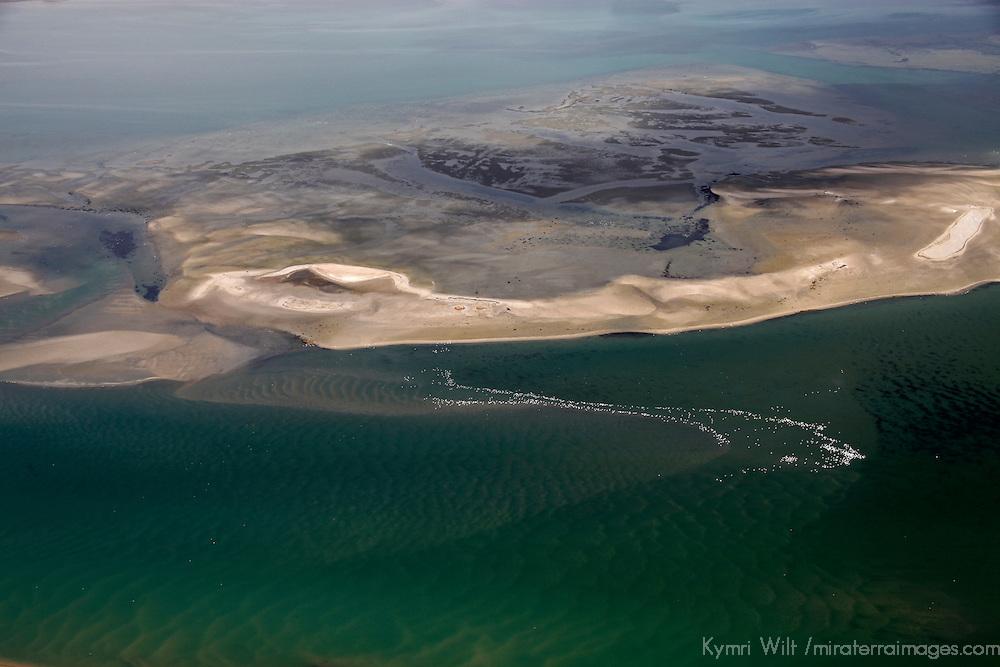 Africa, Namibia, Walvis Bay. Aerial view of flamingos in Walvis Bay lagoon, where the Namib Rand desert meets the sea.