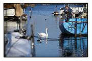 Ghent, Belgium, Jan 15, 2009, Port of Ghent©Christophe VANDER EECKEN