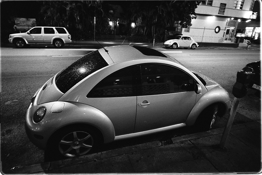 New Beetle in Miami Beach, Fl