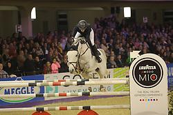 Wargers, Jana, Cornet´s Dream<br /> Frankfurt - Festhallen Reitturnier 2014<br /> Championat von Frankfurt <br /> © www.sportfotos-lafrentz.de/ Stefan Lafrentz