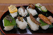 Japanese insect eating couple, Oct 2008