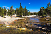 The Lyell Fork of the Tuolumne River, Tuolumne Meadows, Yosemite National Park, California USA
