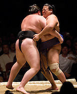 Wakanoho (black mawashi) and Tosanoumi compete in the second round of Day 1 of Grand Sumo Tournament Los Angeles 2008, Los Angeles Sports Arena, Los Angeles, California