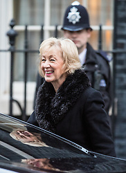 © Licensed to London News Pictures. 10/01/2017. London, UK. Secretary of State for Environment, Food and Rural Affairs Andrea Leadsom arrives on Downing Street ahead of the weekly Cabinet meeting. Photo credit: Rob Pinney/LNP