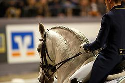 Marcari Oliva Joao Victor, BRA, Xama Dos Pinhais<br /> FEI World Cup Dressage Grand Prix Freestyle<br /> FEI World Cup Neumünster - VR Classics 2017<br /> © Hippo Foto - Stefan Lafrentz