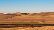 A landscape from the village of Poggiorsini, Italy. Poggiorsini was a feud of the Orsini family who gave their name to the country. It is the smallest city center in the metropolitan city of Bari and is part of the National Park of the High Murgia of Apulia region.