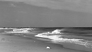 The Jersey Shore, Seabright