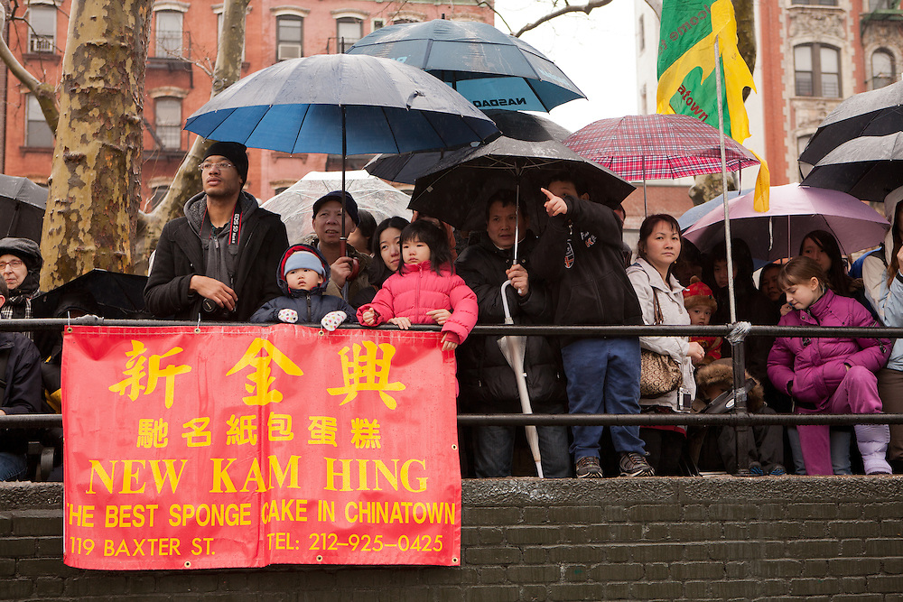 Crowds gather around Sara D. Roosevelt Park to watch the firecrackers and cultural festival.